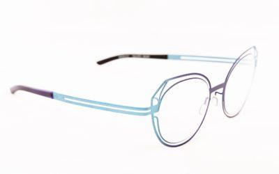 Des lunettes en métal élégantes